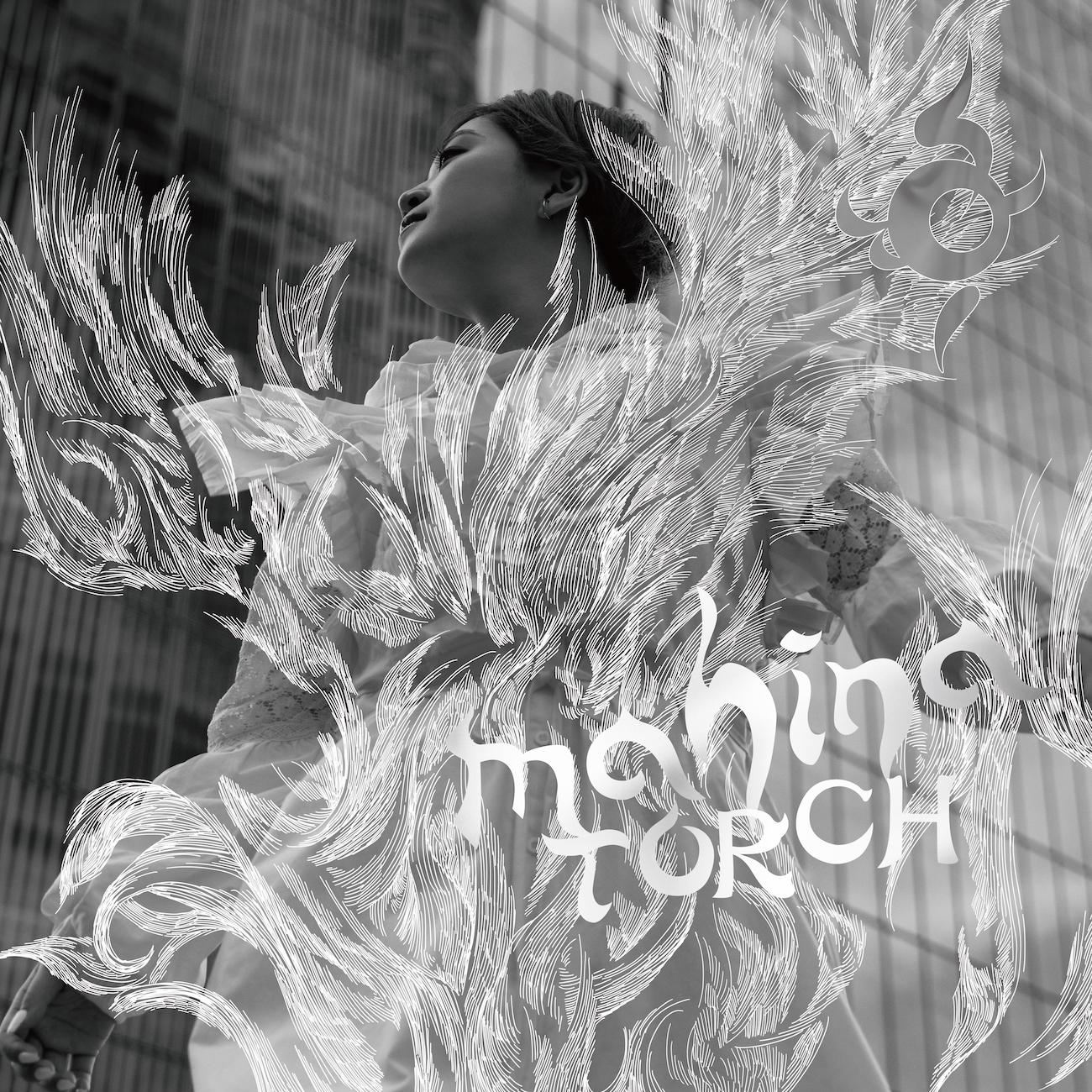 TORCH -CD Ver-